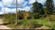 Excelente terreno à venda no Bairro Tijuco Preto, 1400 m² por R$ 198.000,00 - Cotia/São Paulo